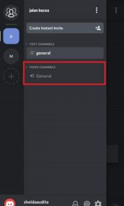 voice to discord 2