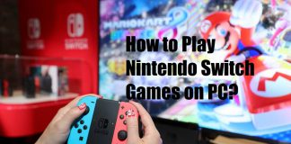 how to play nintendo switch games on pc
